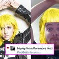 Hayley Williams Liked My Tweet: 29 Stages Of My Emotional Breakdown