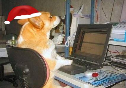 christmas dog typing