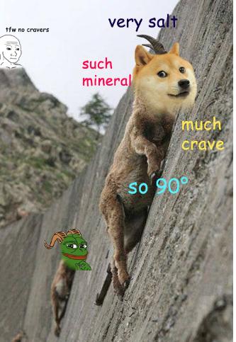 tumblr meme