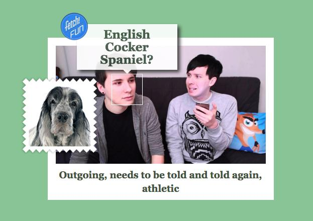 dan and phil dog