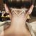 Image 8: zig zag undercut hidden hair tattoos