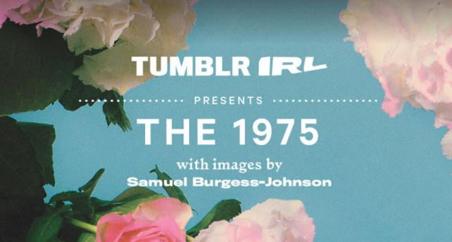 The 1975 tumblr art show