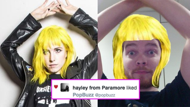 Hayley Williams Liked My Tweet 29 Stages Of My Emotional