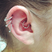 Image 7: Ear Piercing 8