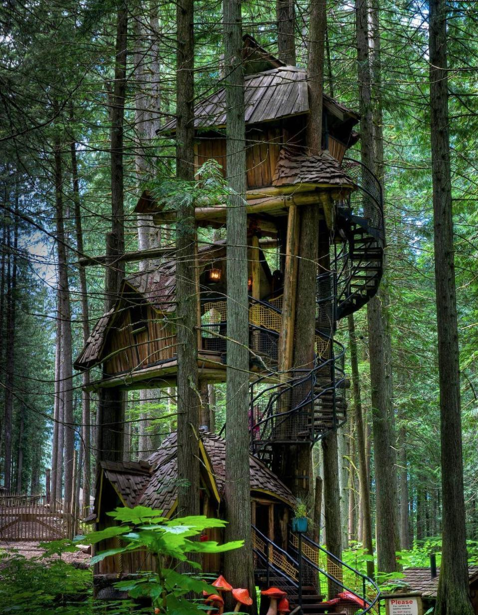 Tree House British Colombia