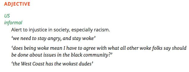 woke dictionary