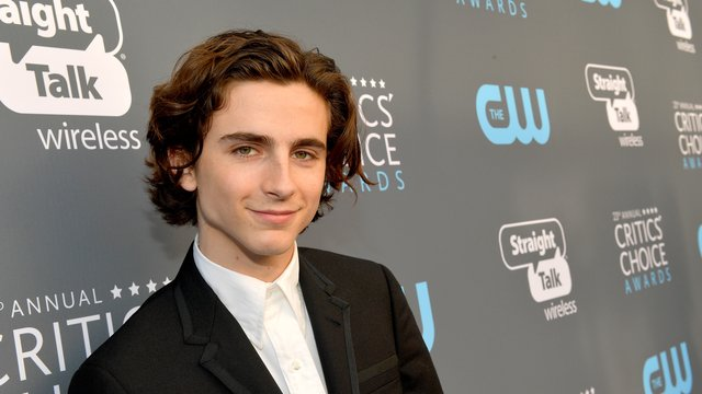 Timothée Chalamet: 29 Facts You Probably Didn't Know About The ...