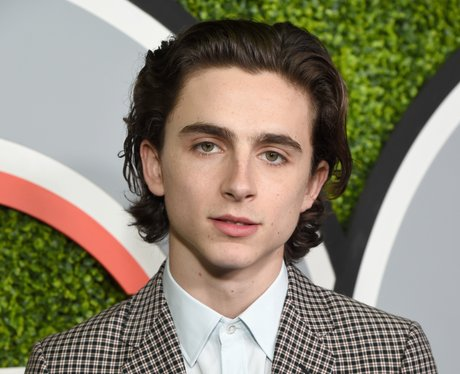 Timothée Chalamet: 29 Facts You Probably Didn't Know About