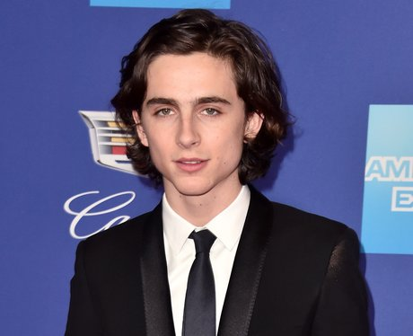 timothee chalamet oscars nomination