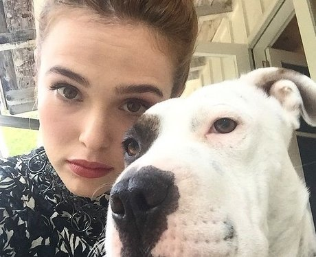 Zoey Deutch dog Maybelle
