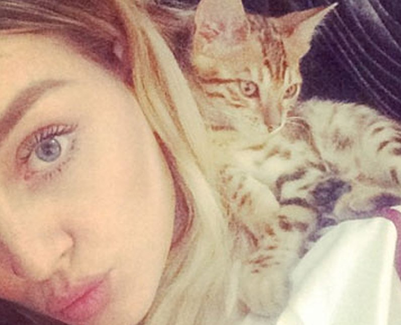 Perrie Edwards cat Prada Benji