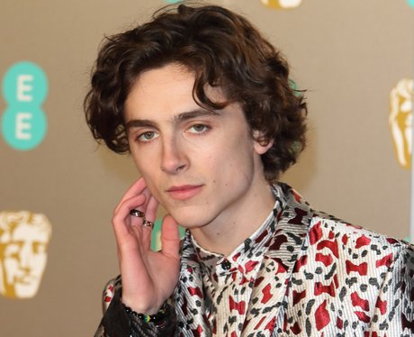 Timothée Chalamet age net worth relationship Lily Rose Depp call me by your name