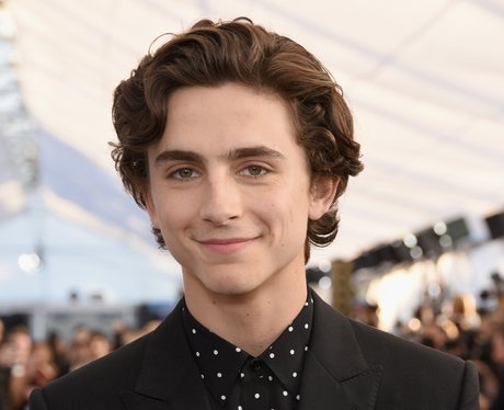 Timothée Chalamet: 29 Facts You Probably Didn't Know About The