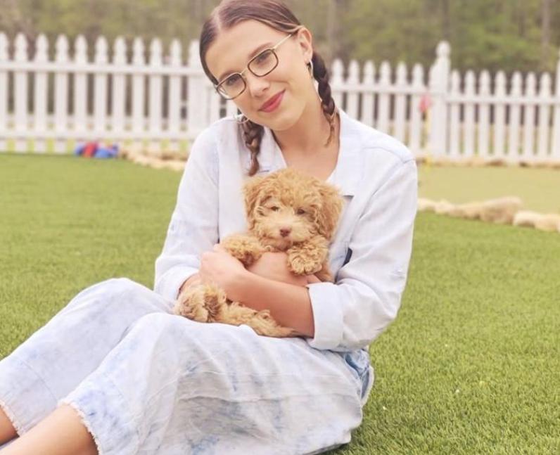 Millie Bobby Brown and dog Winnie