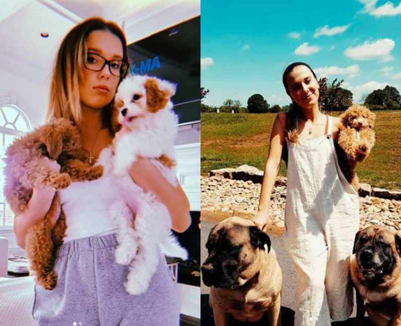 How many dogs does Millie Bobby Brown have?