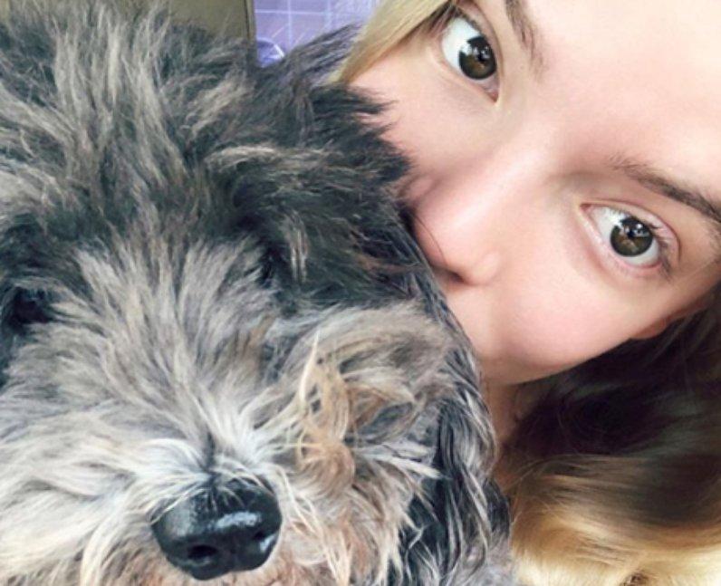 Anya Taylor-Joy Instagram Twitter TikTok Snapchat