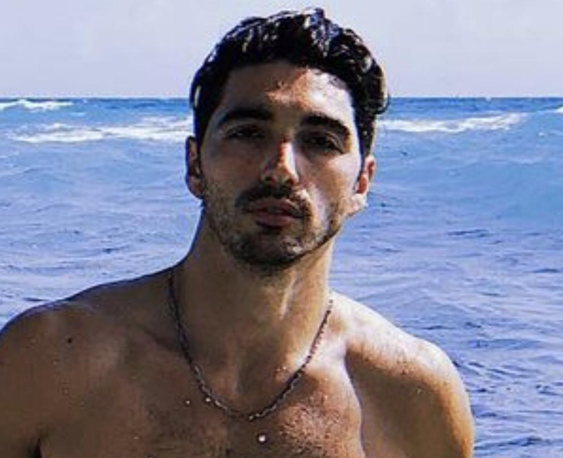 What is Taylor Zakhar Perez's net worth?